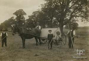 Photograph of Haymaking on Lower Hook Farm, c1920's