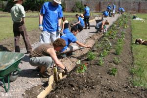 Intel Corporation volunteers restoring the walled garden, 2006
